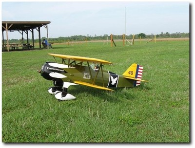 Picture of Curtiss P-6E Hawk  (Scale 1/4) - Laser cut parts